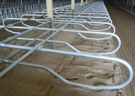 Freudenthal Manufacturing Dog Bone Freestall System