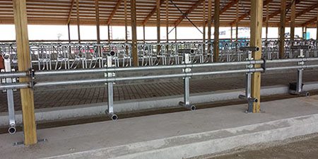 Freudenthal Elevated Dual Rail Suspended Freestalls